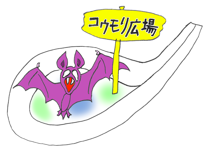 コウモリ広場④_縮小