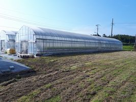 【写真】草刈り作業後の育苗ハウス周辺の様子