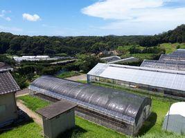【写真】千葉県暖地園芸研究所の施設風景