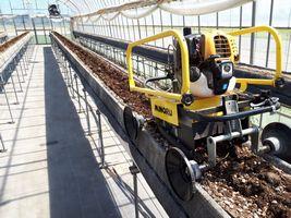 【写真】本圃ハウスの高設ベッドを耕うん作業中のプチ耕うん機