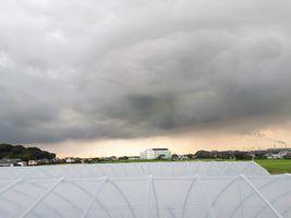 【写真】本圃ハウスの屋根上から見た黒い雲の西の空
