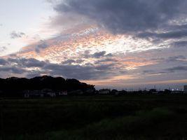 【写真】うろこ雲の夕焼け空の様子