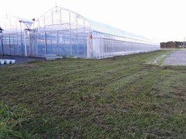 【写真】久しぶりに草刈りを終えた農園内の様子