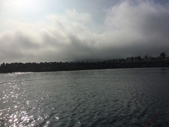 海釣IMG_4155 (640x480)