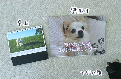 s-1810023 copy