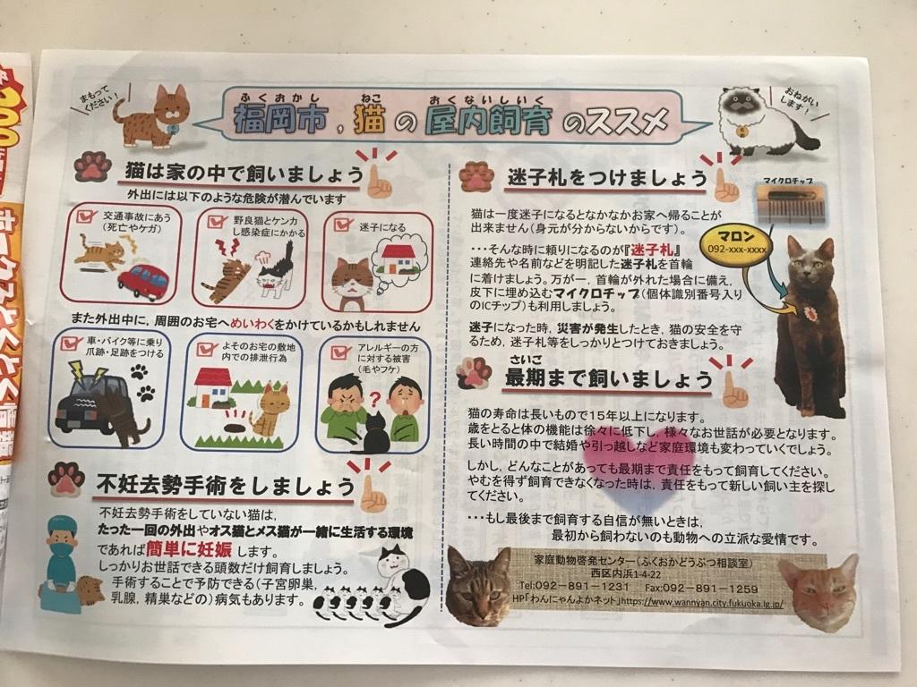 福岡市回覧板 地域猫活動2018