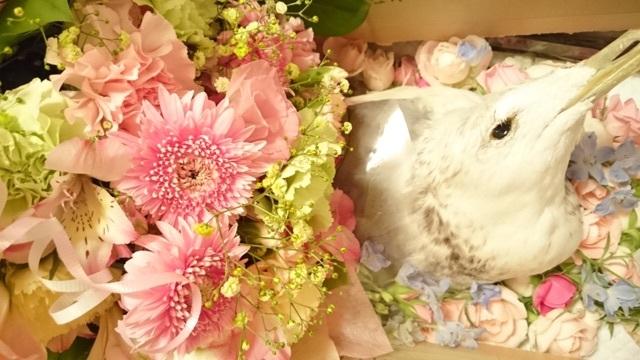 ミーママさんと猫ちゃんママさんから、お供えして頂いた綺麗なお花に囲まれ、笑っているジョナサン✨✨まるで生きているよう✨✨