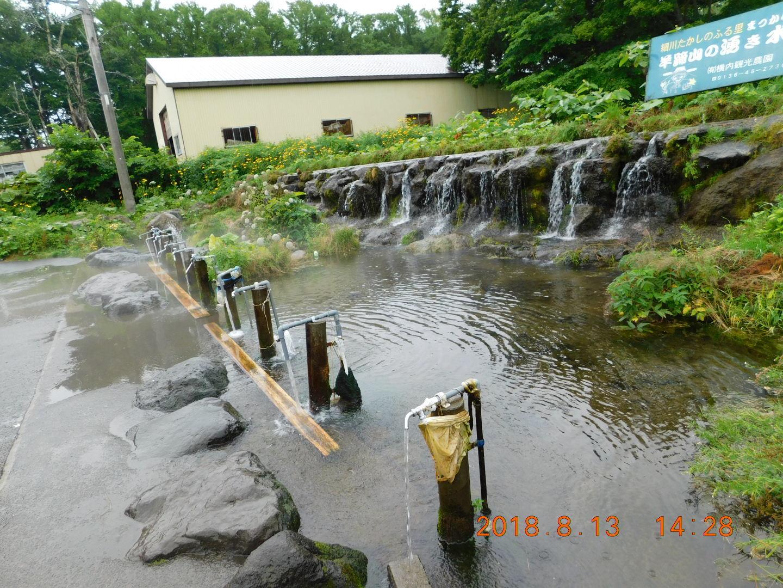 2DSCN0151湧き水 (5)