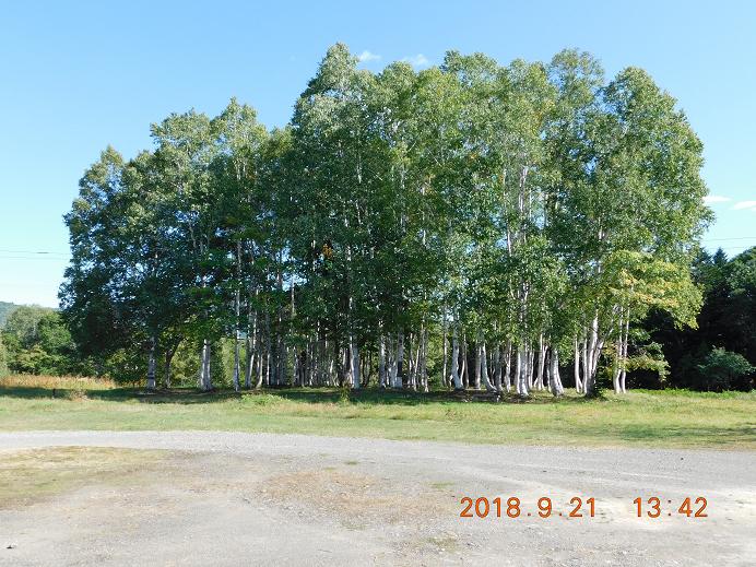 鷹泊ダム公園 (7)