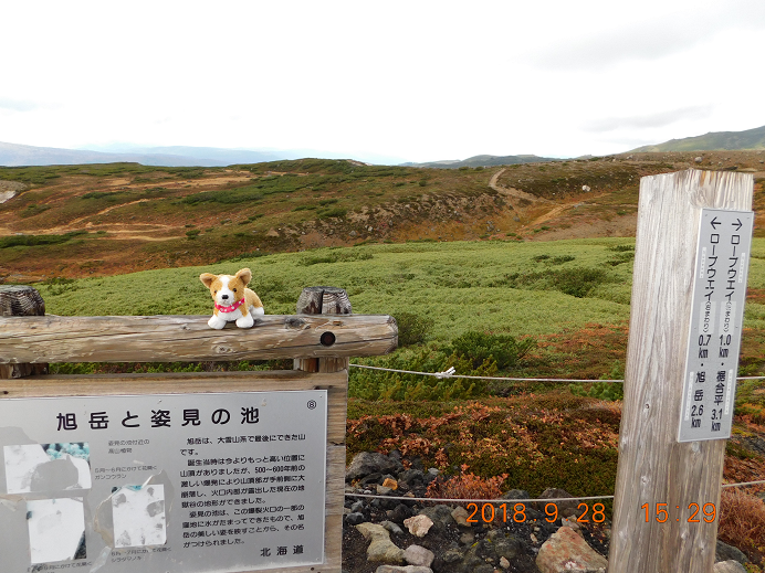 DSCN1006旭岳 (46)