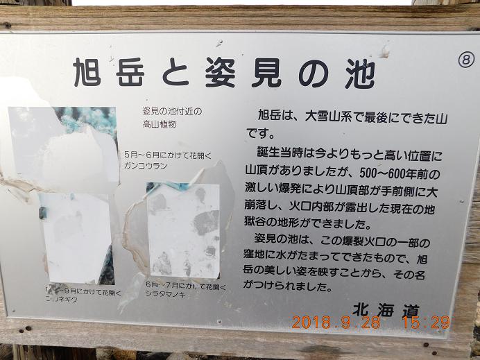 DSCN1006旭岳 (47)