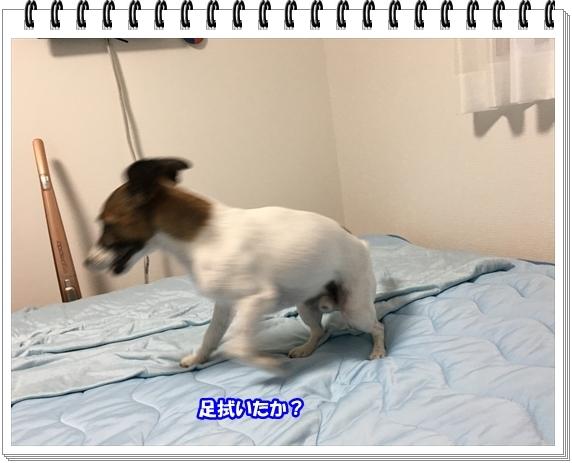 3292ブログNo3