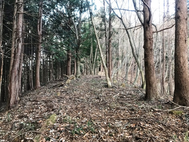 天狗山の砦 (24)