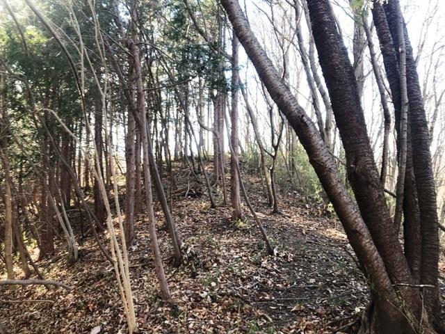 天狗山の砦 (7)