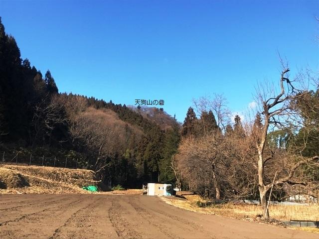 天狗山の砦 (2)