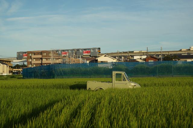 日野市の田んぼと梨畑とミゼット