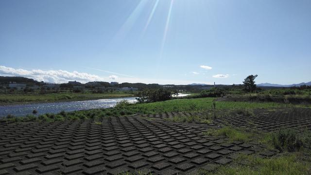 多摩川の夏