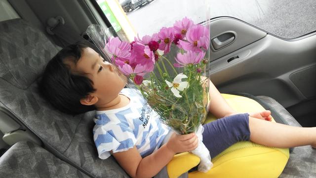 お花を買って