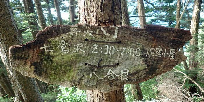 2018,8,11裏銀座縦走5-11