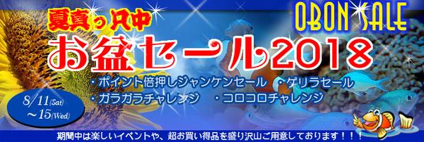 banner_obonsale-f0331-thumbnail2.jpg