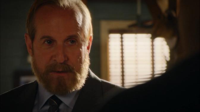 ncislas3e15-Peter Stormare as Interpol Agent Martin Källström