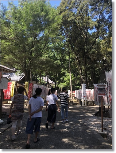 稲荷IMG_6122-20180828
