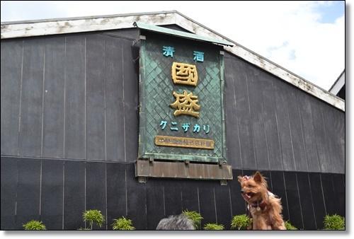彼岸花DSC_0276-20180924