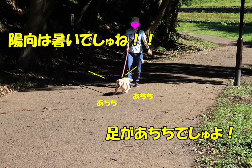 IMG_2391-1000px.jpg