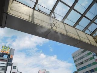 0811ekikumagaya1.jpg