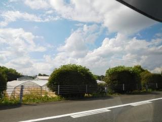 0811kousokujyu1.jpg