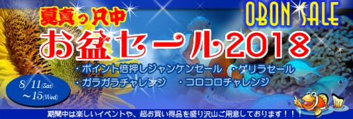 banner_obonsale-f0331.jpg