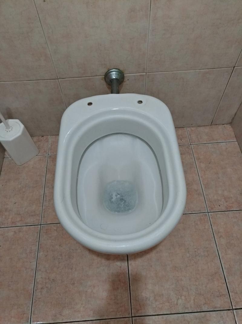 P_20180823_160939(Toilet).jpg