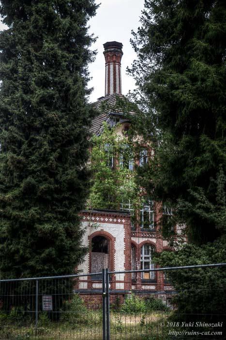 木々の間から垣間見えるベーリッツ・ハイルシュテッテン・サナトリウム廃墟のメイン棟