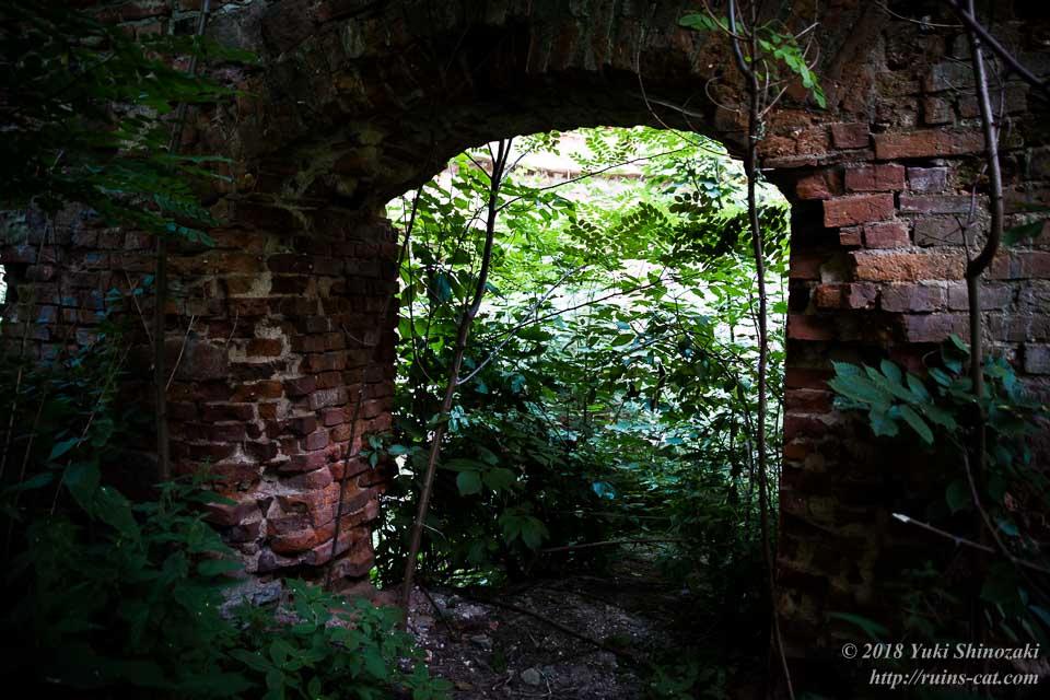 宮殿内部のトンネル状構造物。草木に阻まれてこれ以上進めない。