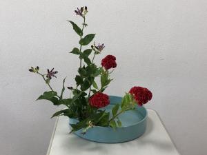 盛花直立型2