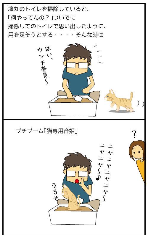 2コマ猫専用