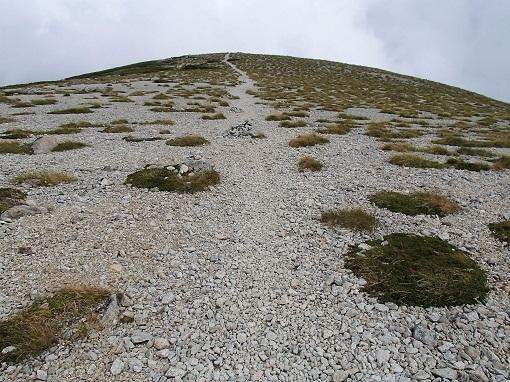 双六岳のプロムナード