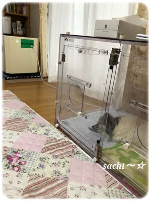 ラッキー酸素室☆