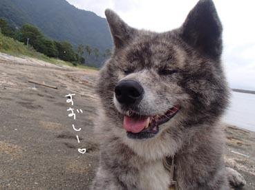 田の浦10