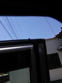 ドアにテントウムシ