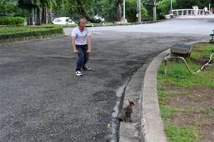 Cat and Kung Fu practitioner, Lumpini Park, Bangkok Thailand