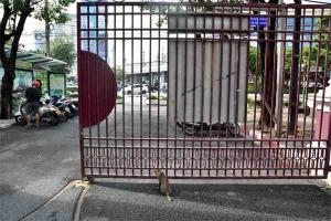 Gate, Lumpini Park, Bangkok Thailand