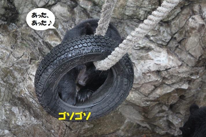 57 - コピー