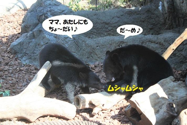 287 - コピー