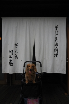 H30110626川上庵