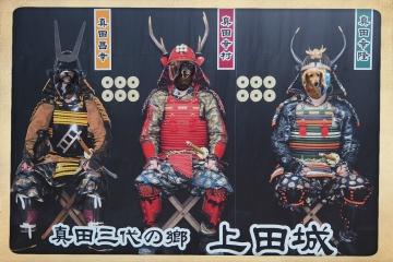 H30110748上田城