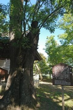 H30110831川中島古戦場跡