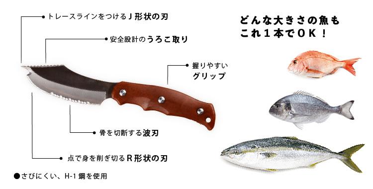 サカナイフ