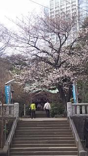 20180324花見(その19)