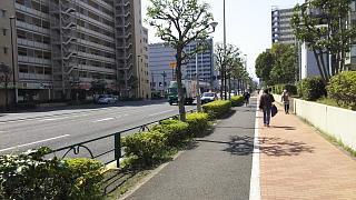 20180325東陽町(その4)
